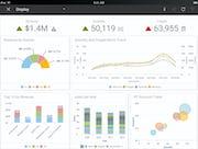Infor Birst - iPad view