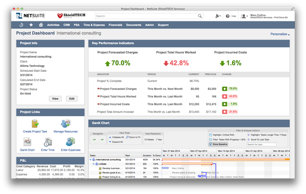 NetSuite - Project dashboard