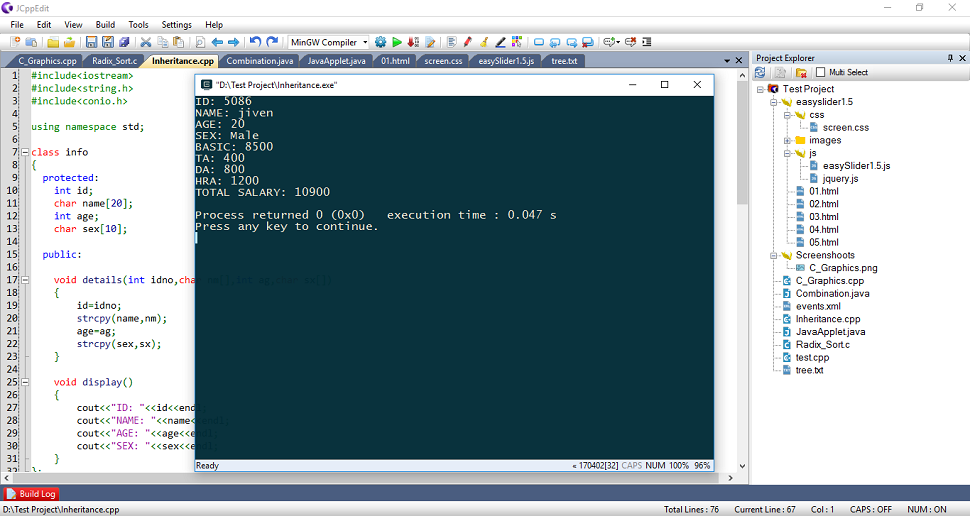 Java programming