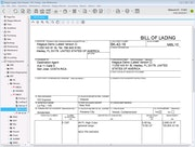 Magaya Cargo System - Bill of lading