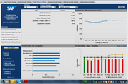 SAP Business All-in-One - Real-Time Project Reporting