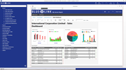 Blue Link ERP - Sales dashboard