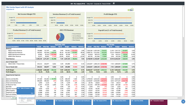 Analytical profit and loss report