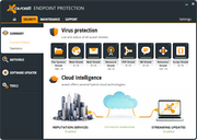 avast! Endpoint Protection - Virus check