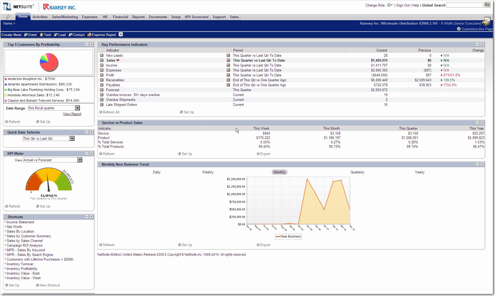 NetSuite - Senior Executive Dashboard