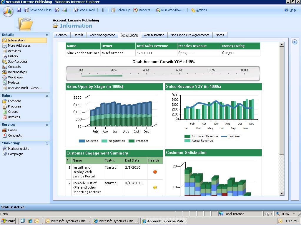 Microsoft Dynamics CRM - Account review dashboard