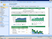 Microsoft Dynamics CRM - Account review dashboard