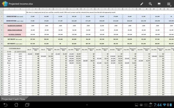 Excel Forms for Projected Cash Flow