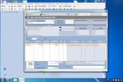 Sales Transaction Screen