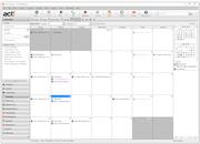 Act! - Calendar view