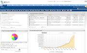 NetSuite - Financials dashboard