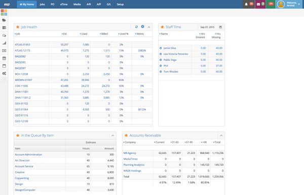 Executive, Project Management, and CRM Dashboards