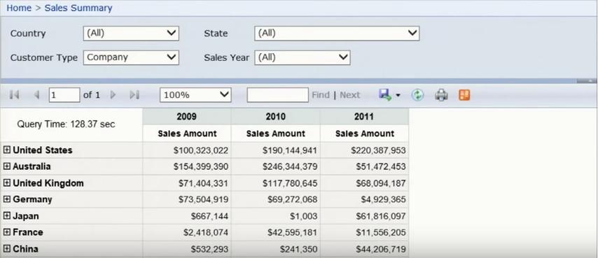 Microsoft SQL Server - BI Edition - Sales summary