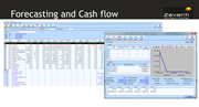 Forecasting and cash flow