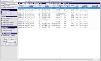 Caseload Manager - My Caseload
