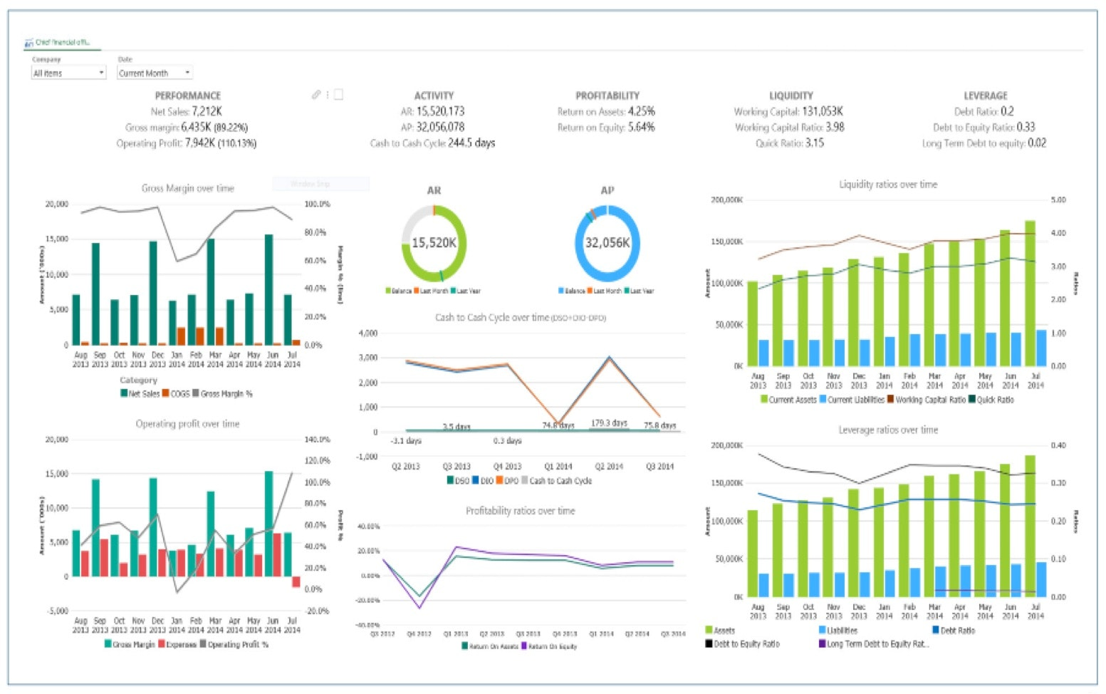 Chief Financial Officer Dashboard