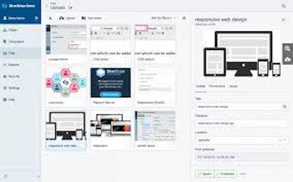 Silverstripe file upload page