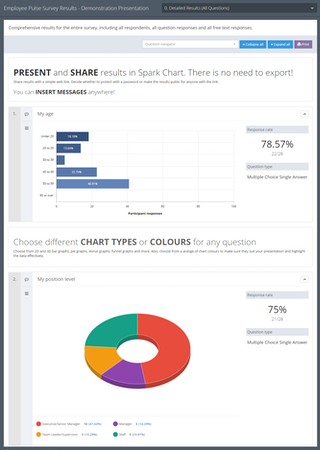 Survey report example