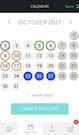 TIMEOFF.GURU team calendar