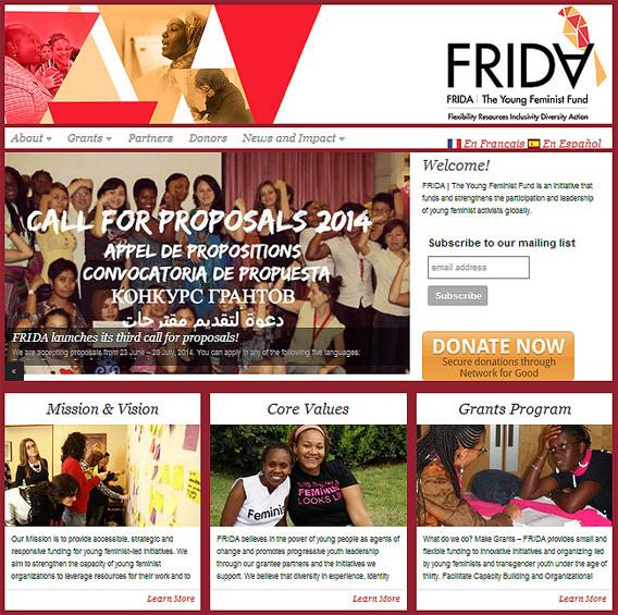 FRIDA's website